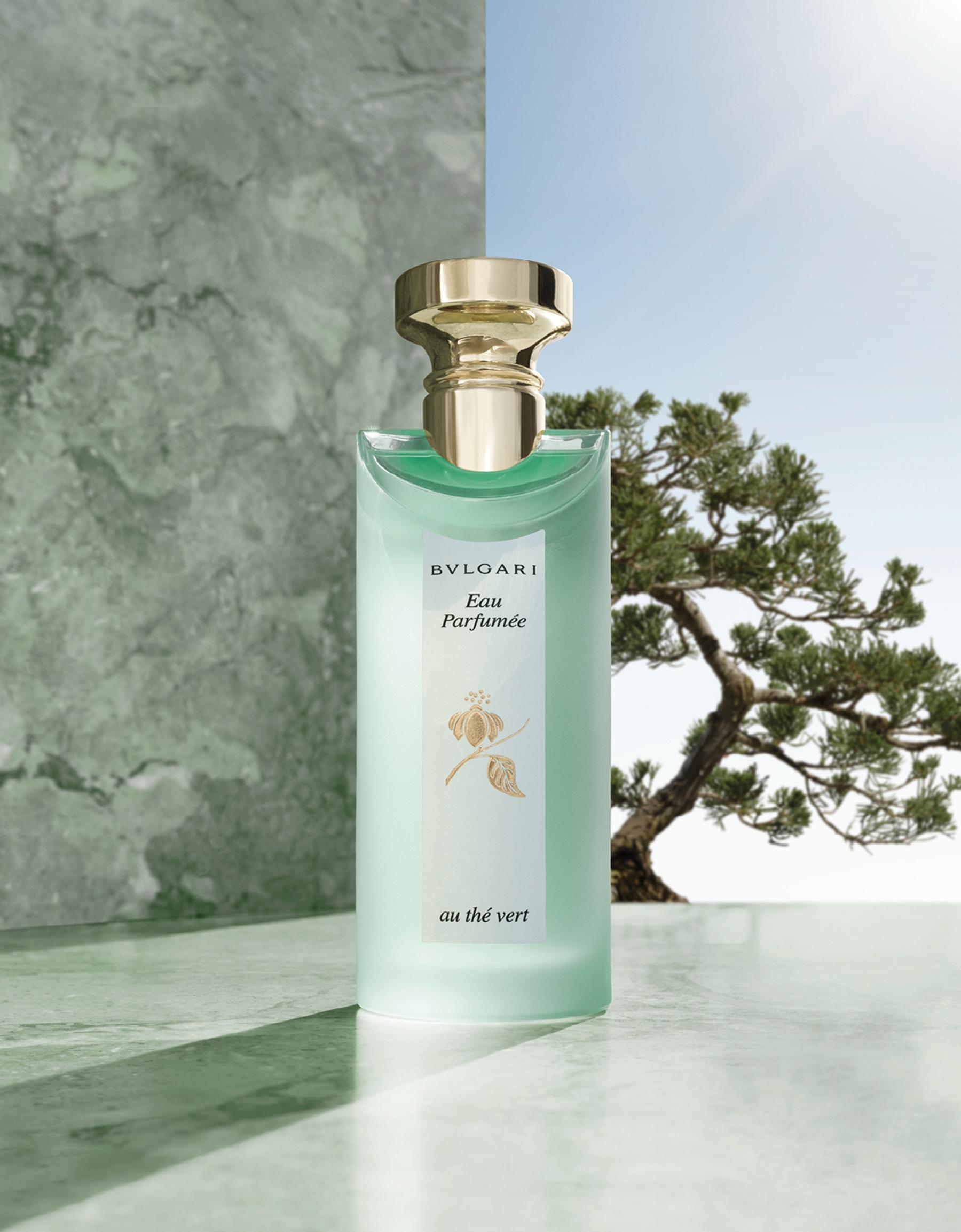 Une Eau de Cologne rafraîchissante de luxe pour homme et pour femme, rendant hommage au thé vert du Japon 47170 image 3