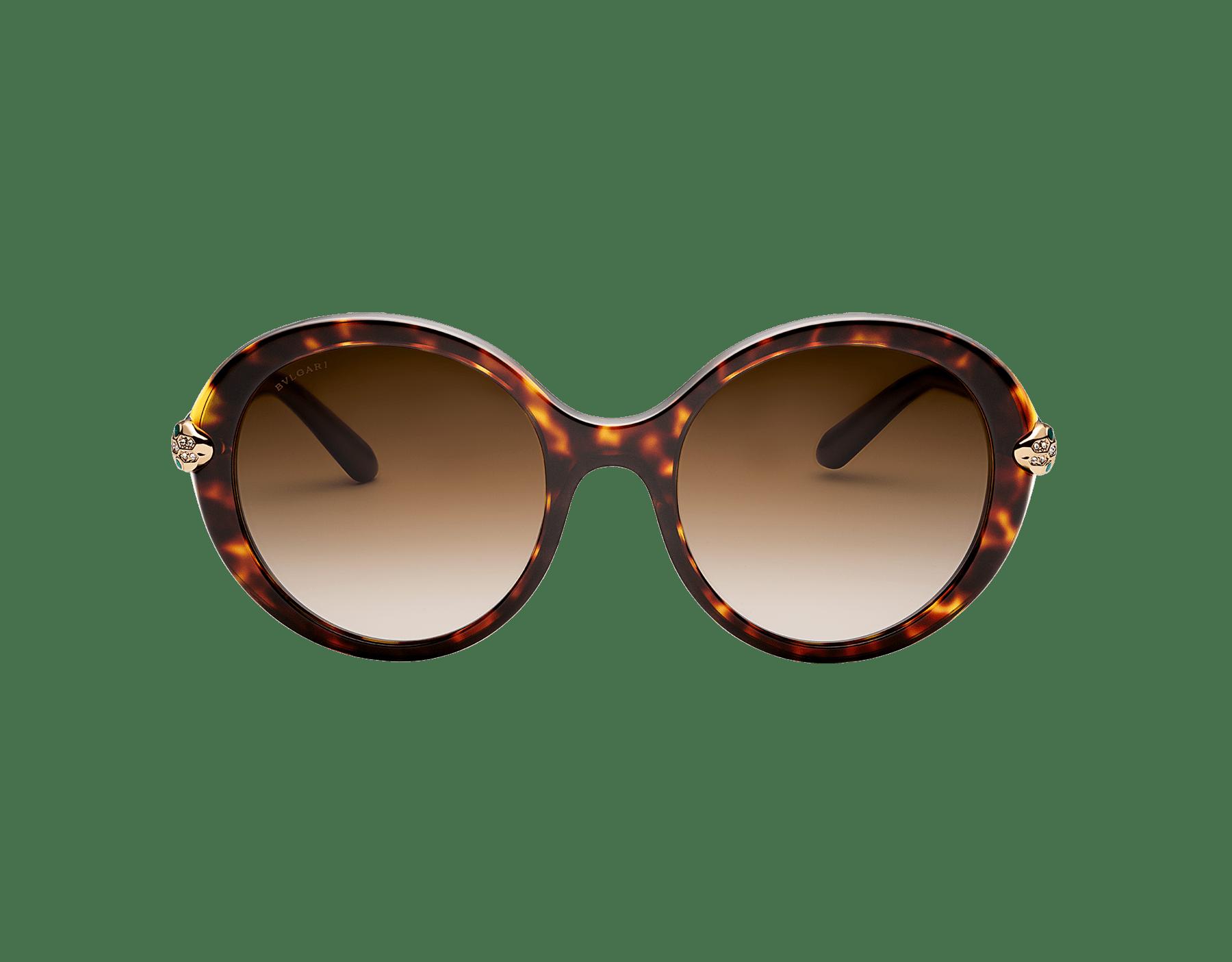 Óculos de sol Serpenti com formato redondo em acetato. Disponível em Asian Fit. 903583 image 2