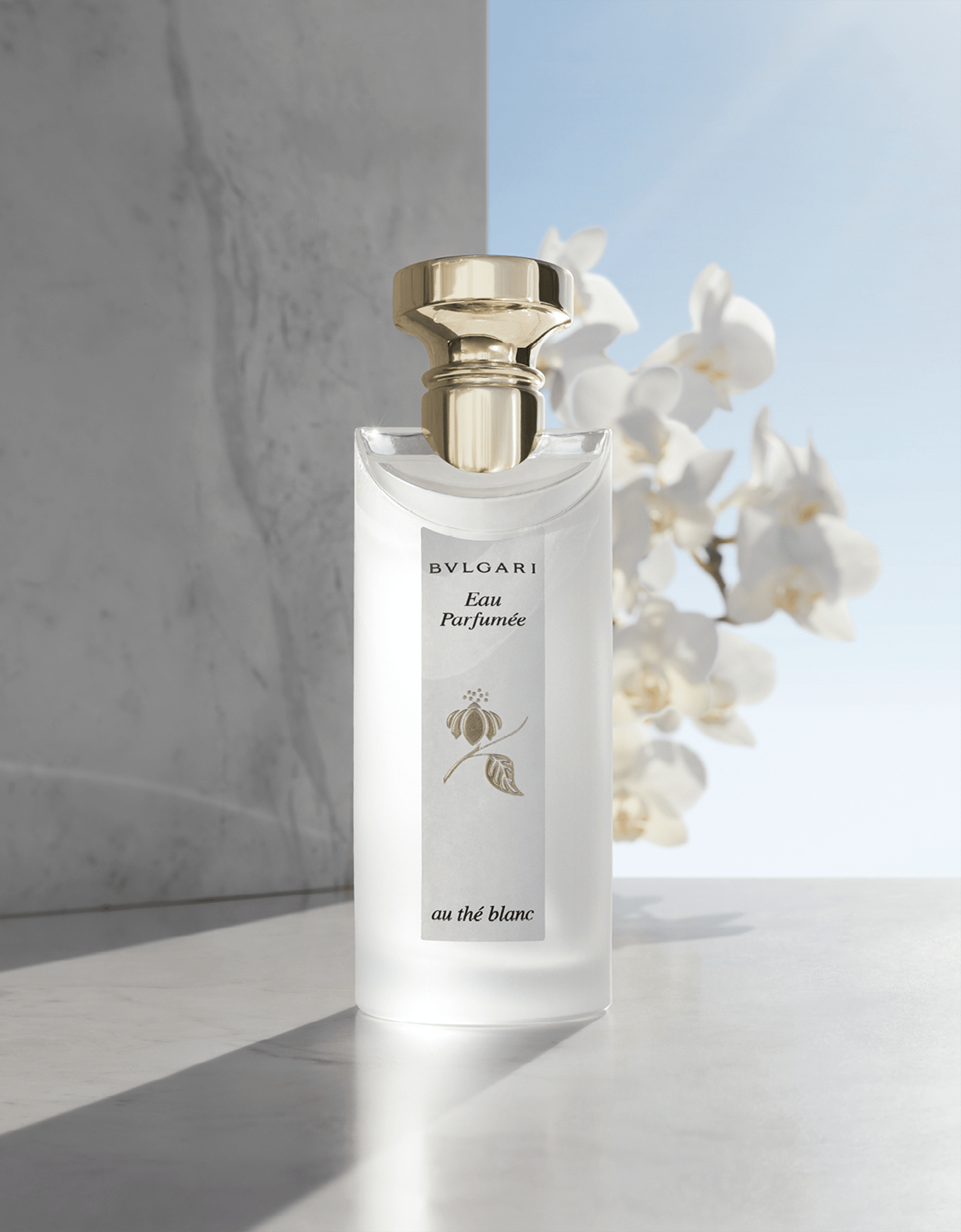 A luxurious floral eau de cologne for men and women inspired by rare white Himalayan Tea. 47270 image 3