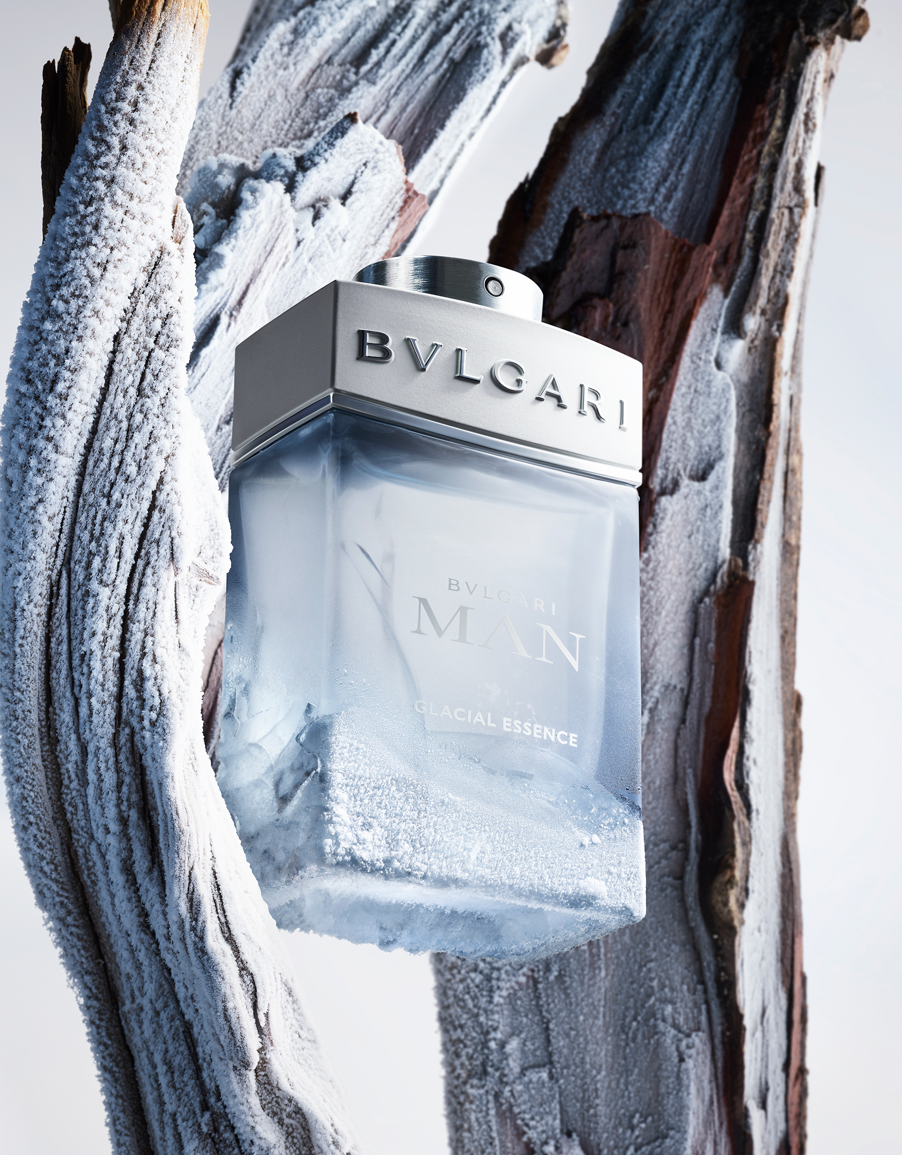The elemental power of a woody fougere fragrance, crystallised by ice. 41194 image 3